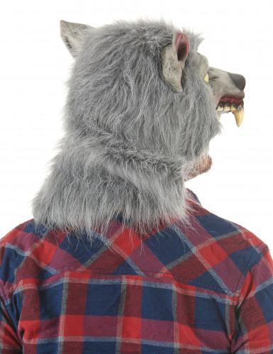 Masque en latex Loup garou adulte-1