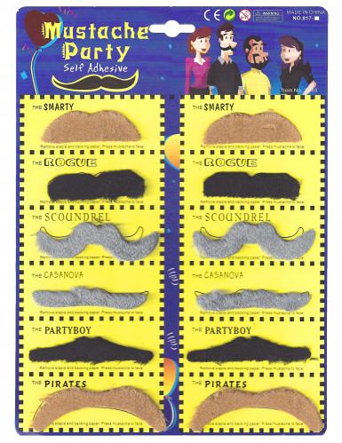 Lot de 12 moustaches adulte