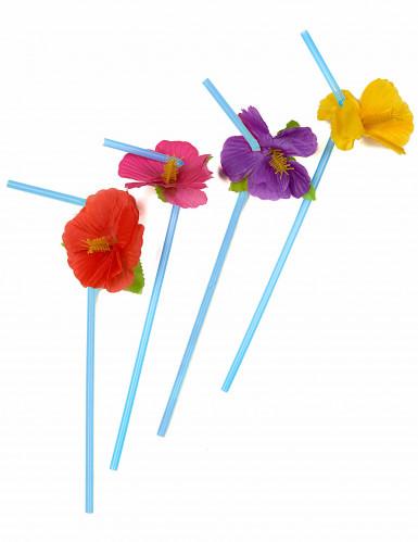 12 pailles fleurs Hawai