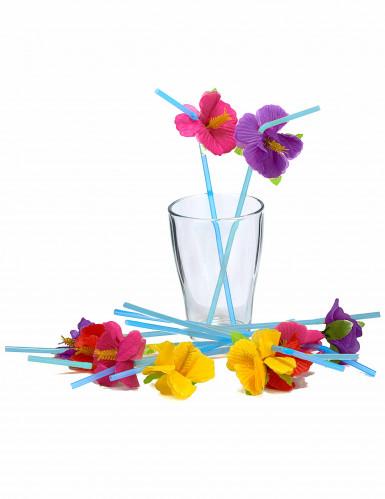 12 pailles fleurs Hawai-1