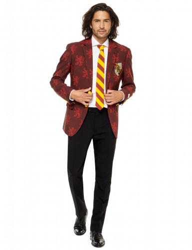 Costume Mr. Harry Potter™ homme Opposuits™