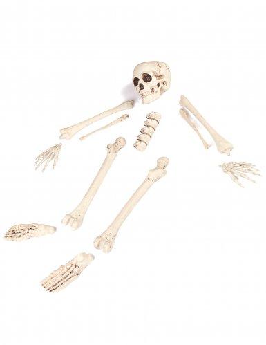 Sac d'os 12 pièces Halloween