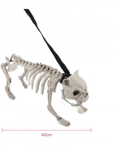 Chien squelette en laisse lumineux et sonore-1