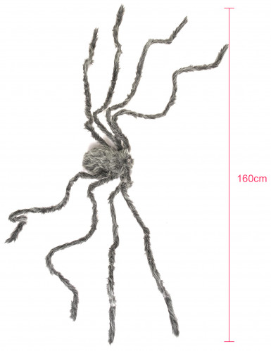 Araignée géante grise velue Halloween 160 cm-2