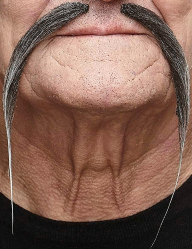 Moustache chinoise grise adulte