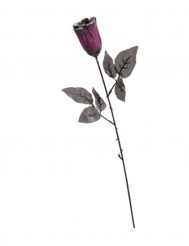 Rose noire violette pailletée