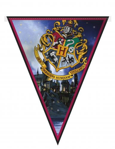 Kit de décorations Harry Potter ™ 7 pièces-2