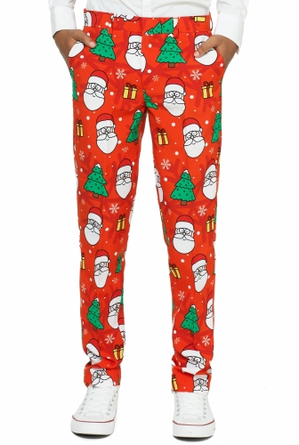 Costume Mr. Holiday hero adolescent Opposuits™-2