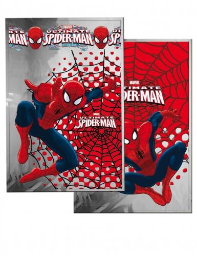 10 Sacs cadeaux Spiderman™ 20 x 30 cm