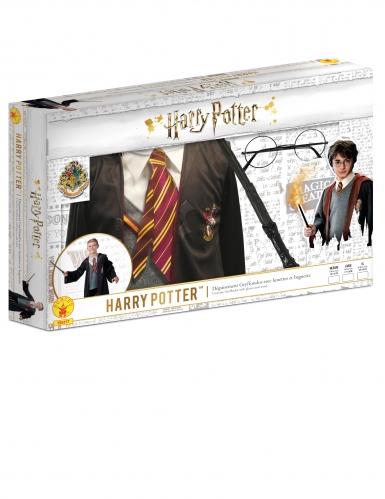 Coffret déguisement et accessoires Harry Potter™-1