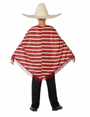 Déguisement de Mexicain avec poncho garçon-2