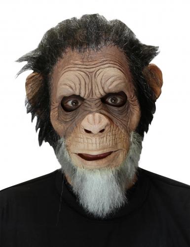 Masque vieux singe adulte