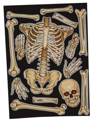Stickers pour fenêtre squelette 30 x 40 cm