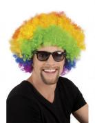 Perruque afro disco clown multicolore volume adulte