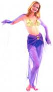 Déguisement danseuse orientale femme