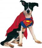 Déguisement Superman™ pour chien ou chat