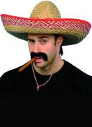 Sombrero mexicain adulte