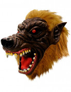 Masque int�gral loup-garou adulte
