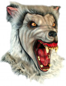 Masque loup garou des neiges adulte