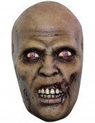 Masque zombie errant adulte Halloween
