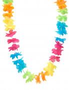 Collier Hawaï multicolore adulte