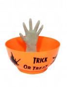 Vous aimerez aussi : R�cipiet main attrape bonbons