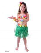 Vous aimerez aussi : D�guisement hawa�enne verte fille
