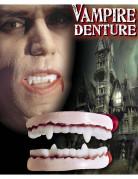 Dentier vampire adulte Halloween 100% PVC