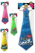 Cravate humoristique beau gosse