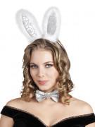 Kit lapin argenté adulte