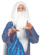 Perruque sorcier avec barbe homme