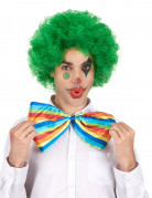Perruque afro/ clown verte confort adulte
