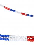 2 Guirlandes papier tricolore supporter France 3 m
