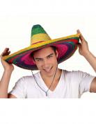 Sombrero multicolore