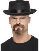 Kit Walt White Breaking Bad™ adulte