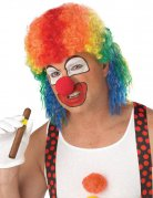 Psycho Clown Halloween Mullet Wig coloured