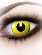 Lentilles fantaisie œil jaune adulte