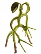 Figurine Botruc articulée Les Animaux Fantastiques™ 28 cm