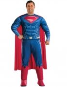 Déguisement Superman Justice League™ adulte grande taille